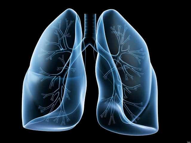 pneumonia poate fi vindecata prin suplimentarea vitaminei C