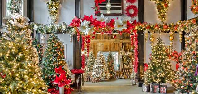 Crăciun fericit, minunații mei prieteni!