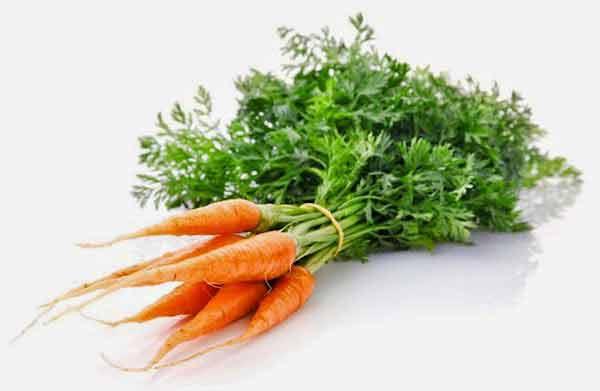 frunzele de morcov au proprietati calmante si antiseptice