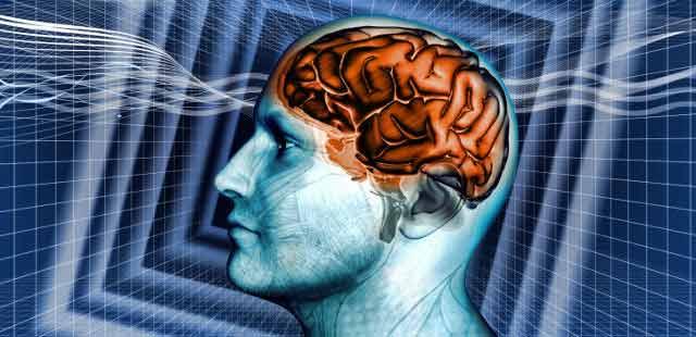 toxinele continute de anumite alimente sunt o adevarata otrava pentru creier