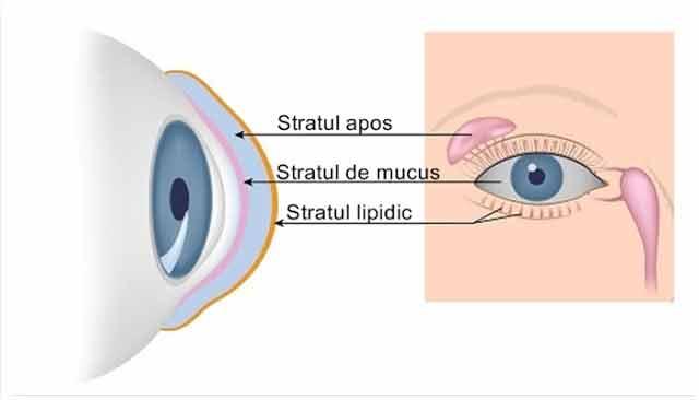 xeroftalmia este o boala oculara ce produce foarte mult disconfort