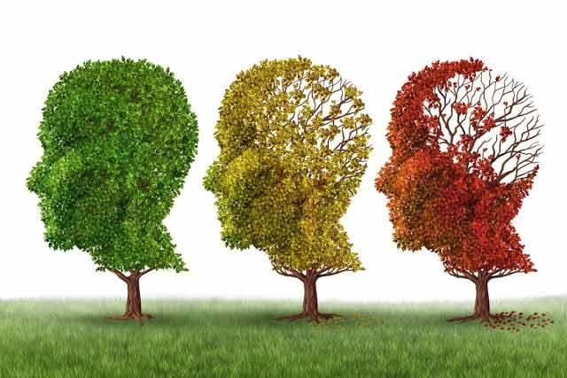 boala alzheimer poate fi prevenita sau intarziata prin schimbari simple de stil de viata