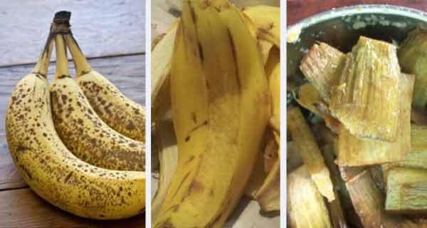 cojile de banane accelereaza arderile de grasimi si favorizeaza slabirea