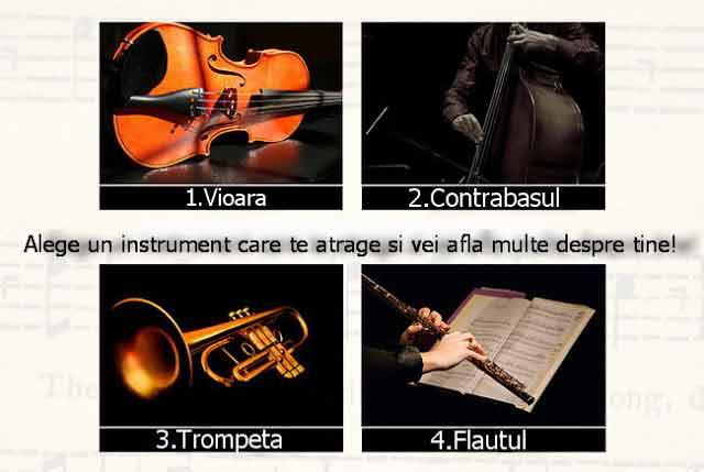 instrumentul muzical ales iti releva detalii interesante despre personalitate