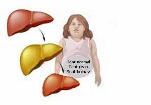 sfecla rosie este foarte buna pentru regenerarea ficatului bolnav