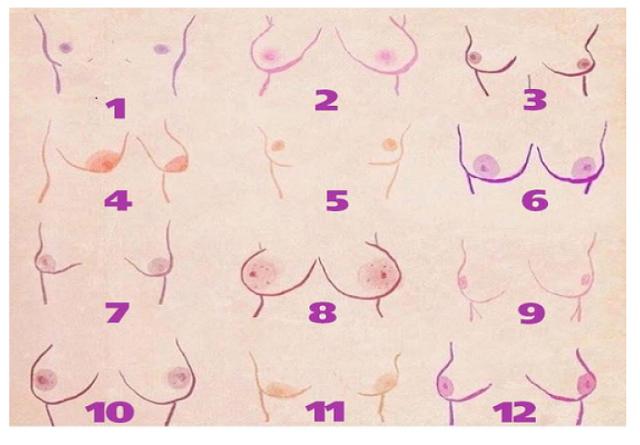 Sânii tuturor femeilor sunt frumoși, însă forma lor spune multe despre personalitate!