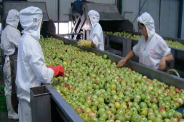 Alimente provenite din China care sunt ticsite cu plastic, pesticide și chimicale cancerigene și de care trebuie să te ferești