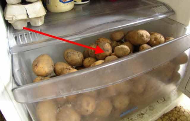 umiditatea din frigider accelereaza alterarea cartofilor
