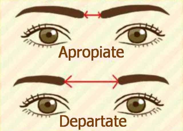 forma si aspectul sprancenelor releva indicii despre tipul de personalitate