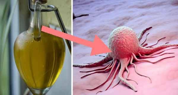 Doar o lingurita din acest ulei omoara celulele canceroase in cateva minute!