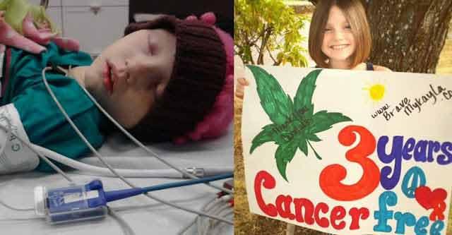 La numai sase zile dupa initierea terapiei cu ulei de cannabis, leucemia acestei fetite a intrat in remisie