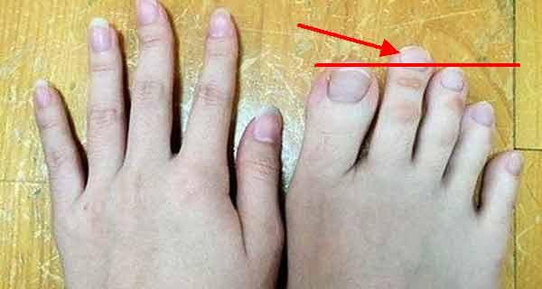 ce reprezinta degetul aratator mai lung