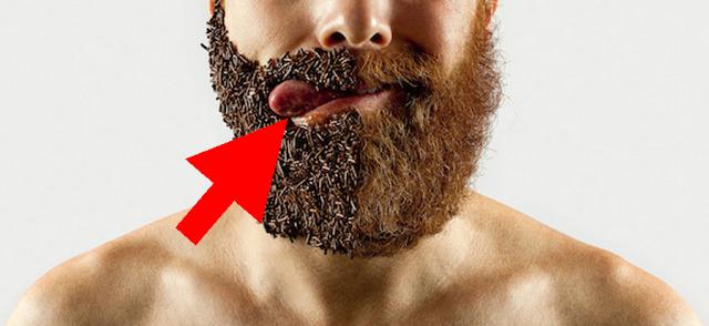Sfaturi pentru purtătorii de barbă. O asemenea podoabă capilară, neîngrijită, poate deveni sursă de microbi