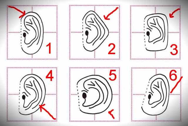 Descoperă personalitatea după forma urechii