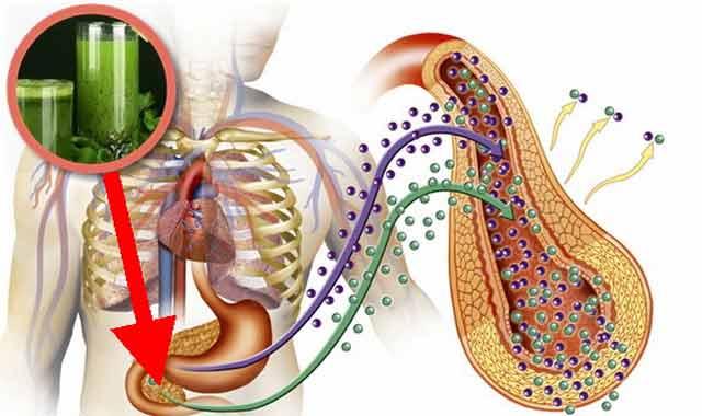 sucul de fasole verde trateaza diabetul