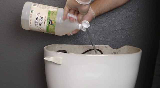 de ce toarna acest barbat otet in vasul de toaleta?