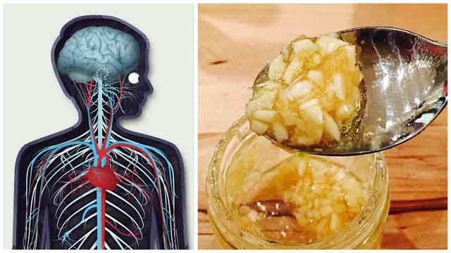 ce se intampla atunci cand consumi usturoi cu miere