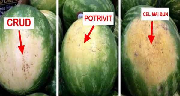 alege asa cel mai bun pepene