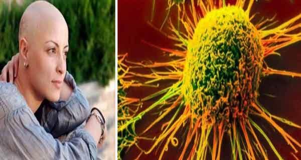 Consumul de fibre pot preveni bolile cronice!