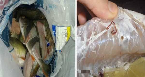 Marile supermarket-uri își bat joc de noi! Carrefour ne servește pește cu viermi!