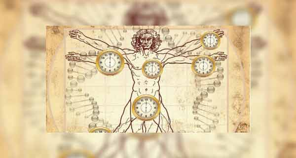 Potrivește ceasul organismului după ceasul chinezesc!