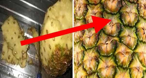 nu mai arunca cojile de ananas