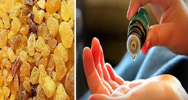 Medicul oncolog  nu vă va spune niciodată faptul că uleiul de tămâie tratează și previne toate tipurile de cancer