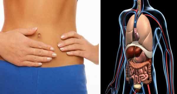 cum se digera mancarea in stomac