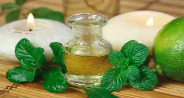 Beneficii asupra sănătății ale uleiului esențial de mentă!
