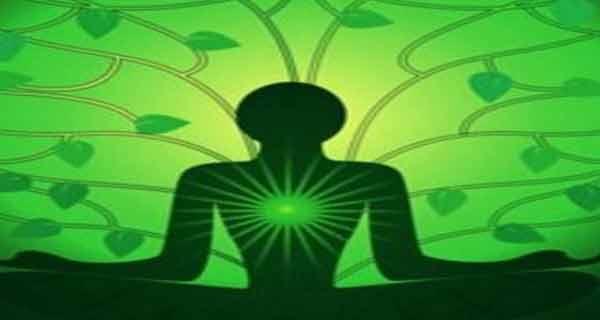 chakra care vindeca plamanii si inimia
