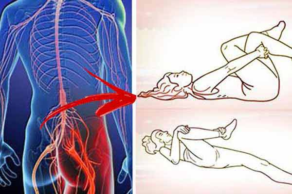Gelatina ?i tratamentul coloanei vertebrale