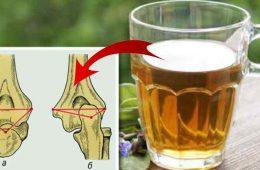 ceaiul de tataneasa ajuta la oase