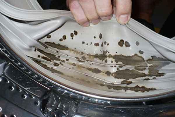 cum elimini mucegaiul din masina de spalat