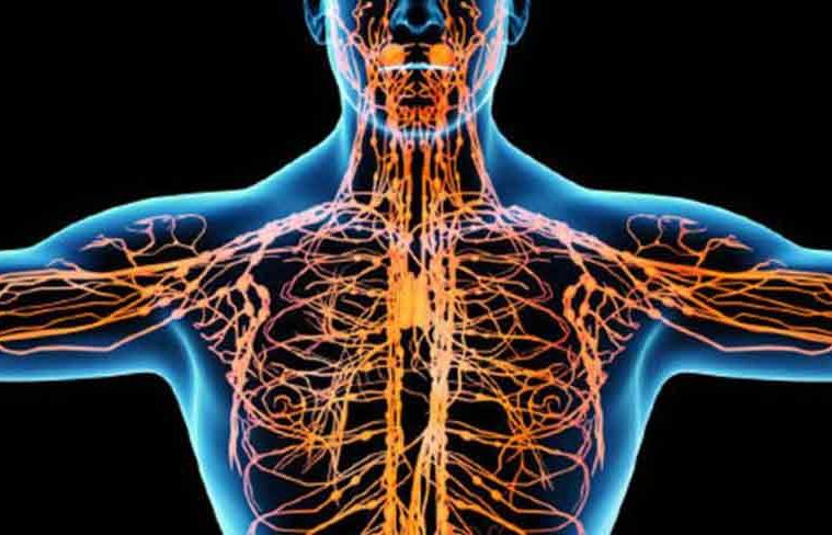 sistem limfatic blocat simptome)