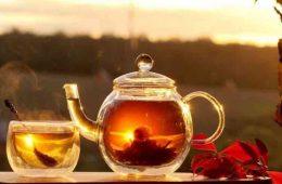 ceaiul este bun cand este cald afara