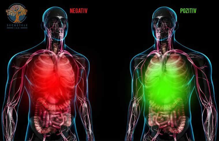 impactul emotiilor negative asupra organismului