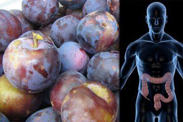 prunele sunt un laxativ natural