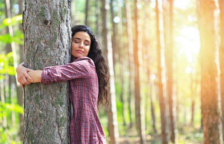 cum ne incarcam cu energie de la copaci
