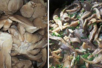 cum sa faci o salata de ciuperci delicioasa