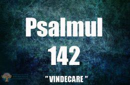 puterea vindecatoare a psalmului 142