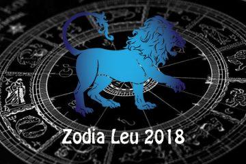 ce ne asteapta in anul 208 leu