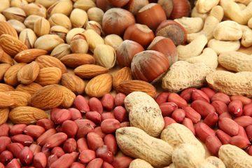 care sunt proteinele vegetale cele mai bune