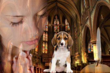 rugaciunea pentru animalele nostre