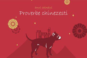 10 proverbe chinezesti