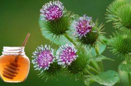 tratamente vechi alergii