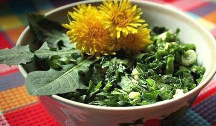 Salata de păpădie este sanatoasa