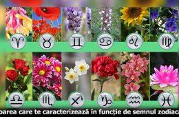 Horoscop flori caracterizare