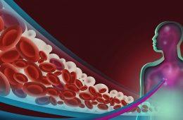 impactul zaharului asupra organismului