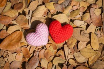 sănătatea inimii în această toamnă
