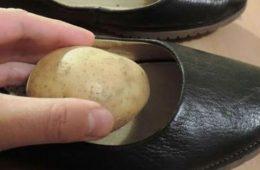 Cartof în pantofi